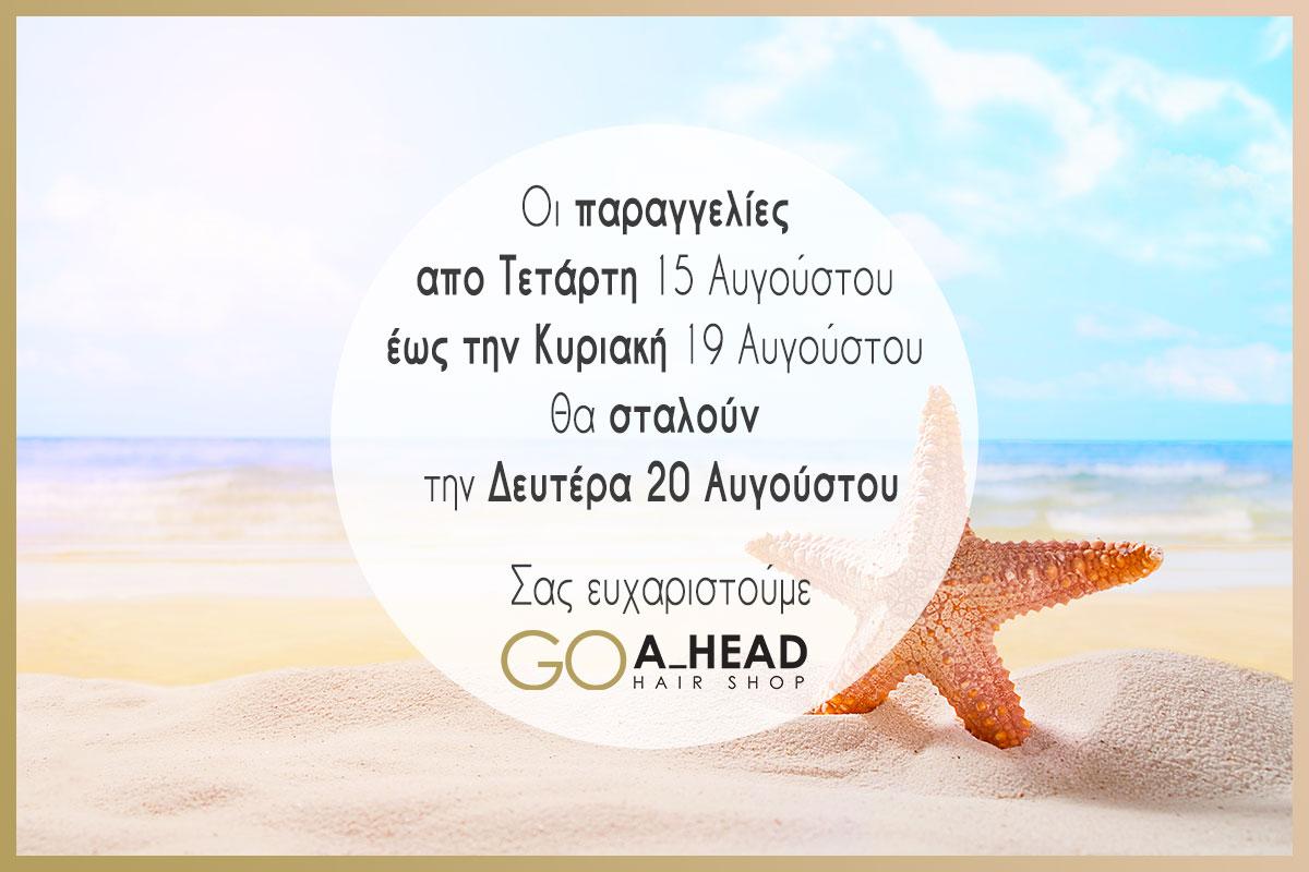 goahead-shop-steam-pod